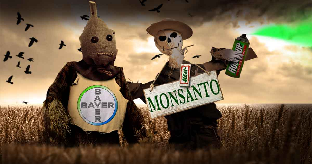 Bayer_monsanto_cargill
