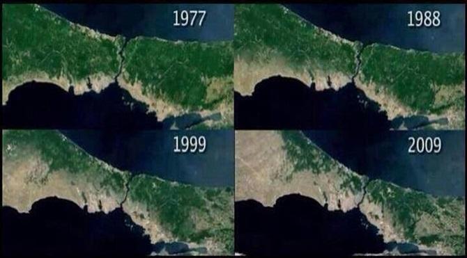 istanbulda-orman-katliami-1977-2009-542003