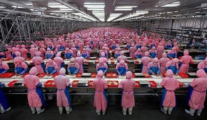 fabrika_işçiler