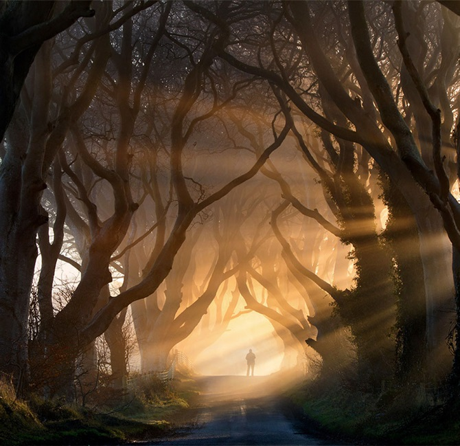 Yürünmesi Gereken Sihirli Yollar