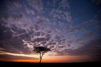 Masai Mara'da Günbatımları