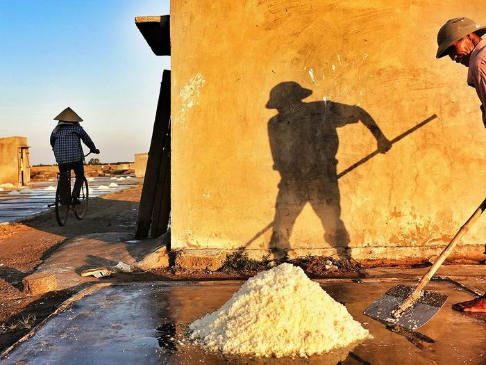 salt-field-worker-vietnam_82434_990x742