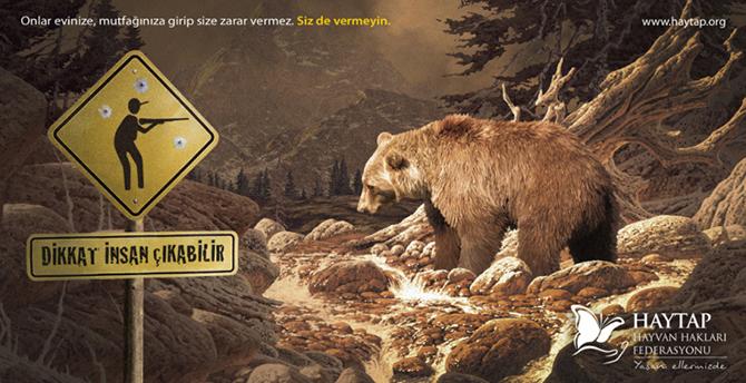 boz ayılar, hayvanların akp ile imtihanı, yusuf yavuz