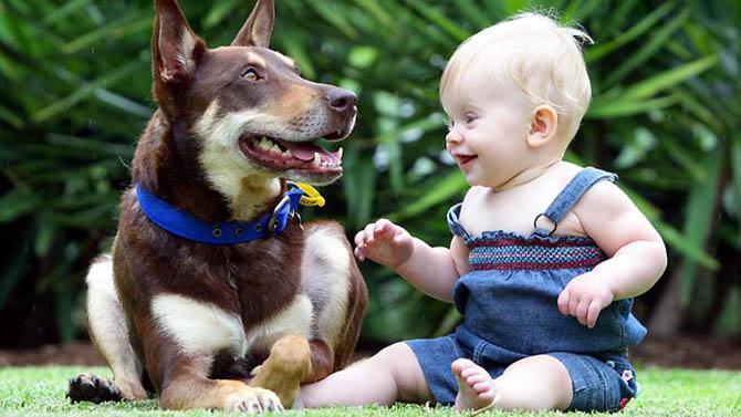 köpek yavrusu ve çocuk