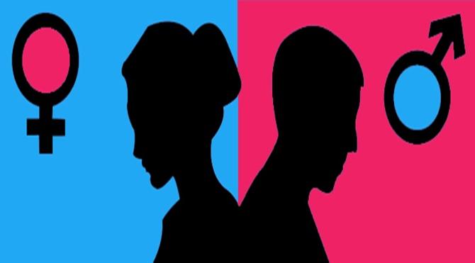 Toplumsal-Cinsiyet-ve-Kadın-Cinayetleri