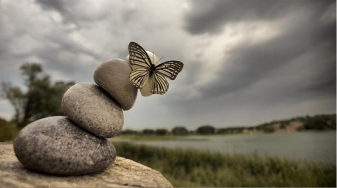 Kelebek etkisi edward lorenz