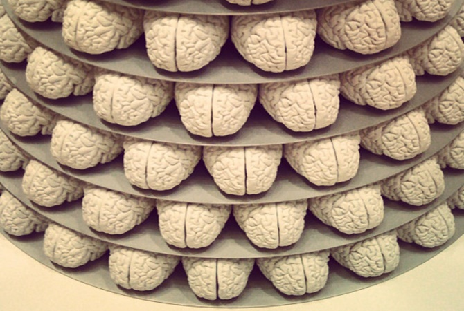 SFMoMA_brains