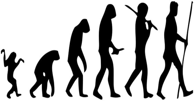 10_18_2013_human-evolution