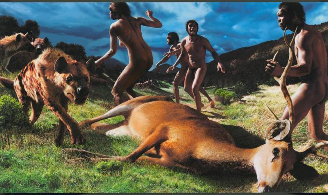Dmanasi'deki arkeolojik bulgulardan esinlenen bu resim, geyik leşine yaklaşan bir sırtlanı taş atarak uzaklaştırmaya hazırlanan dişi bir Homo erectusu gösteriyor. [Fotoğraf: John Gurche, National Geographic Creative]