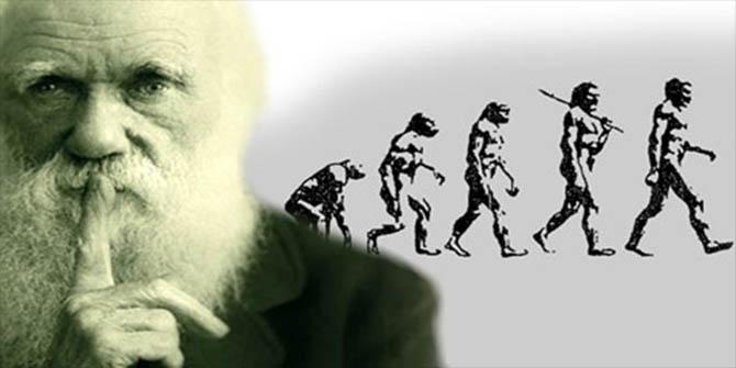 evrim teorisi darwin