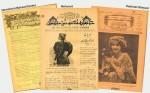 Şükûfezar; Osmanlı'da İlk Müslüman Kadın Dergisi
