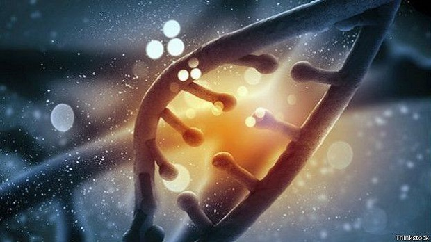 150326081832_dna_deduced_624x351_thinkstock