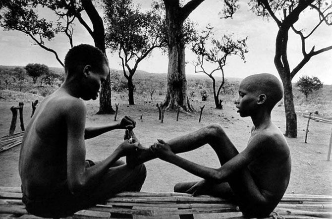 salgado afrika