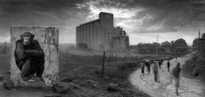 Nick Brandt Inherit the Dust