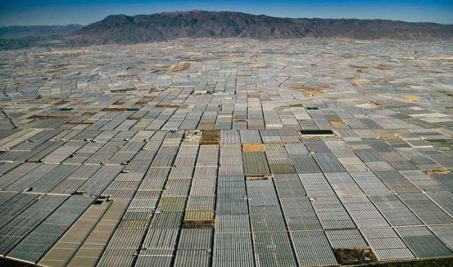 İspanya'da endüstriyel tarım.