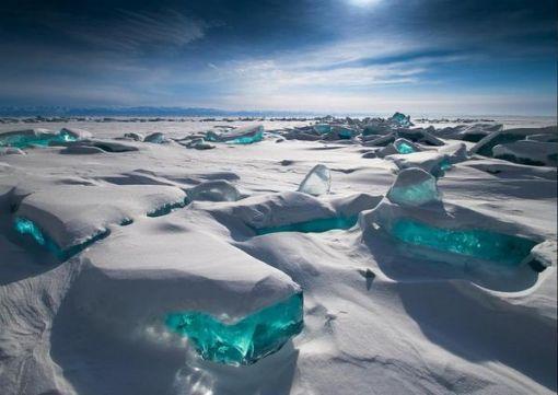 Sibiryanın-Mavi-Gözü