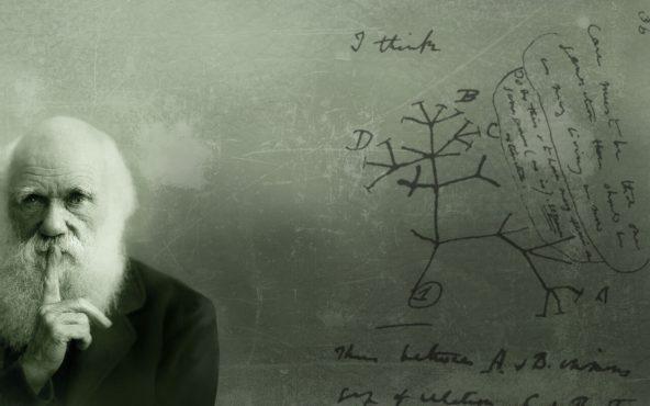 Evrim-Kuramı-ile-Evrim-birbirinden-farklı-kavramlardır