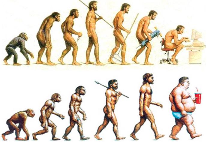 evrim_homo sapiens