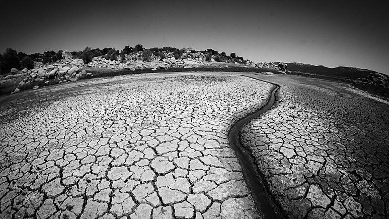 su_kıtlık_ekoloji